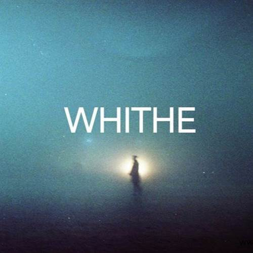 Whithe in DOT. gallery