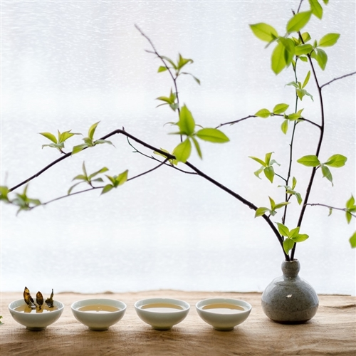 Čajový someliér - úvod do Gong Fu
