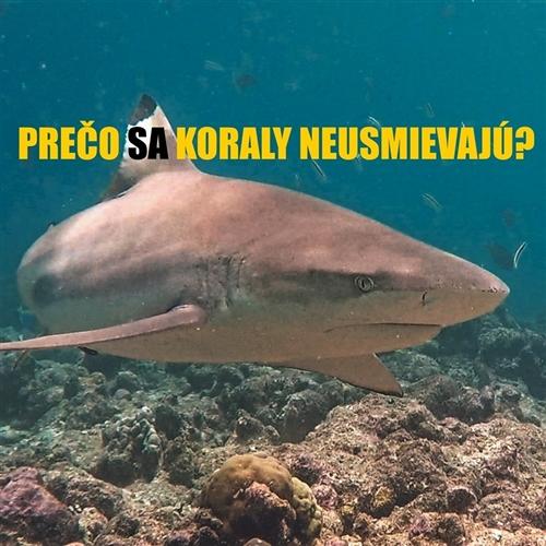 Na káve s VLK-om #2: Vladimír Kováč – Prečo sa koraly neusmievajú, ani keď vidia sladké milovanie chobotníc...